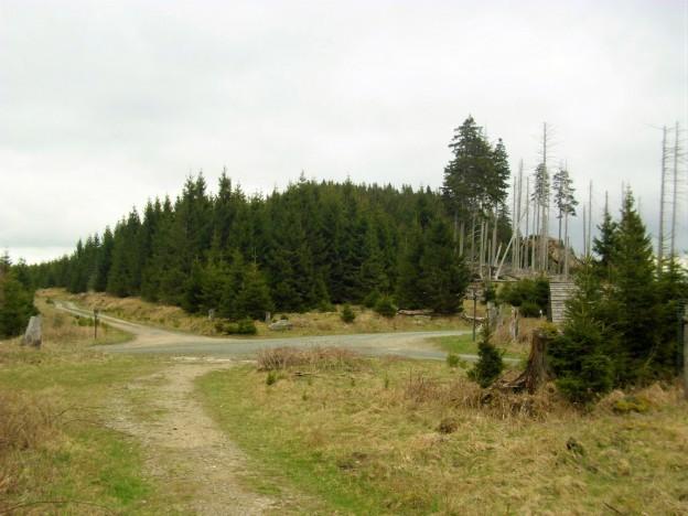 HWN Molkenhausstern Schuder (2)