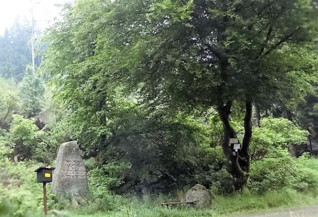HWN Oberförster Koch Denkmal