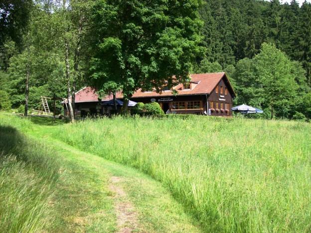 Rinderstall Sommer