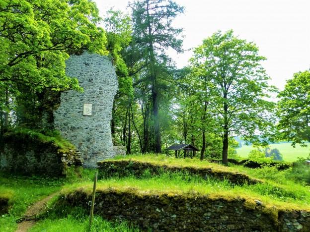 HWN 41 Ruine Königsburg
