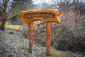 Walderlebnispfad Foto für Wandernadel (1 von 1)kleinformat
